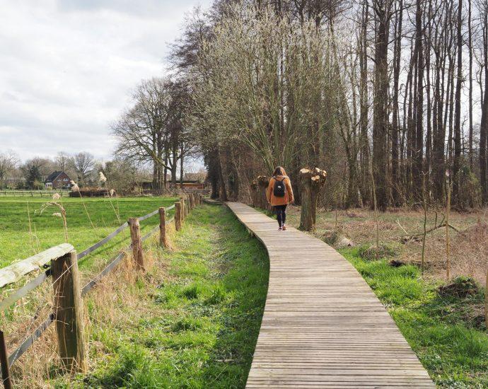 TERRA.track Osnabrücker Land