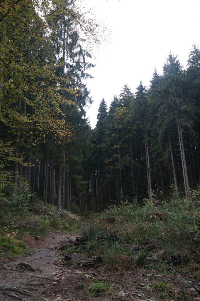 Tecklenburger Land wandelen