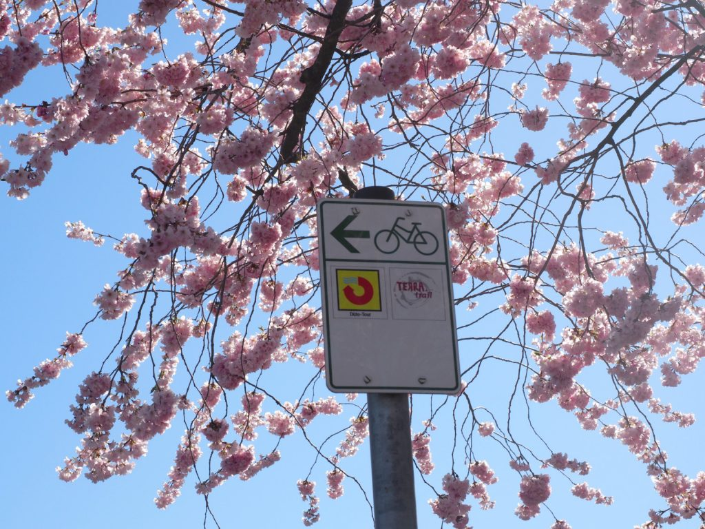 Düte Tour fietsen Osnabrücker Land.JPG