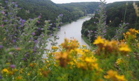 Weltenburger Höhenweg wandeling in het Altmühltal langs de Donau
