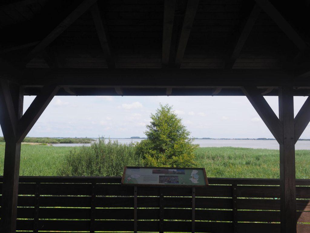Uitzichttoren bij de Dümmer See