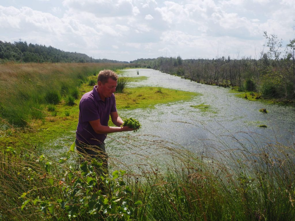 Excursie in Natuurpark Moor-Veenland met Erik Bloeming