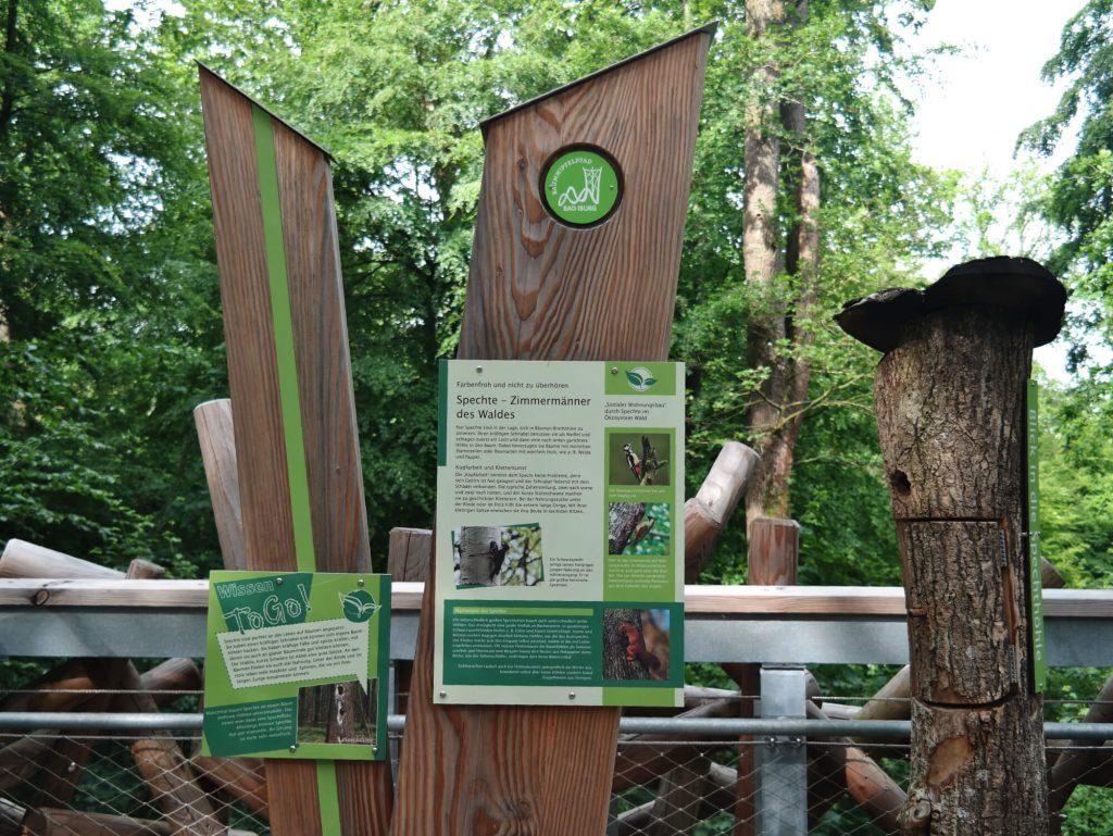 Informatiestation op het boomkroonpad