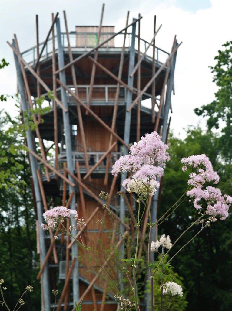 Uitzichttoren van boomkroonpad Bad Iburg