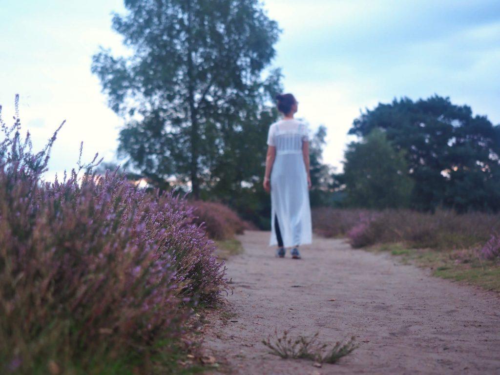 Wandelen op de Westruper Heide in Duitsland