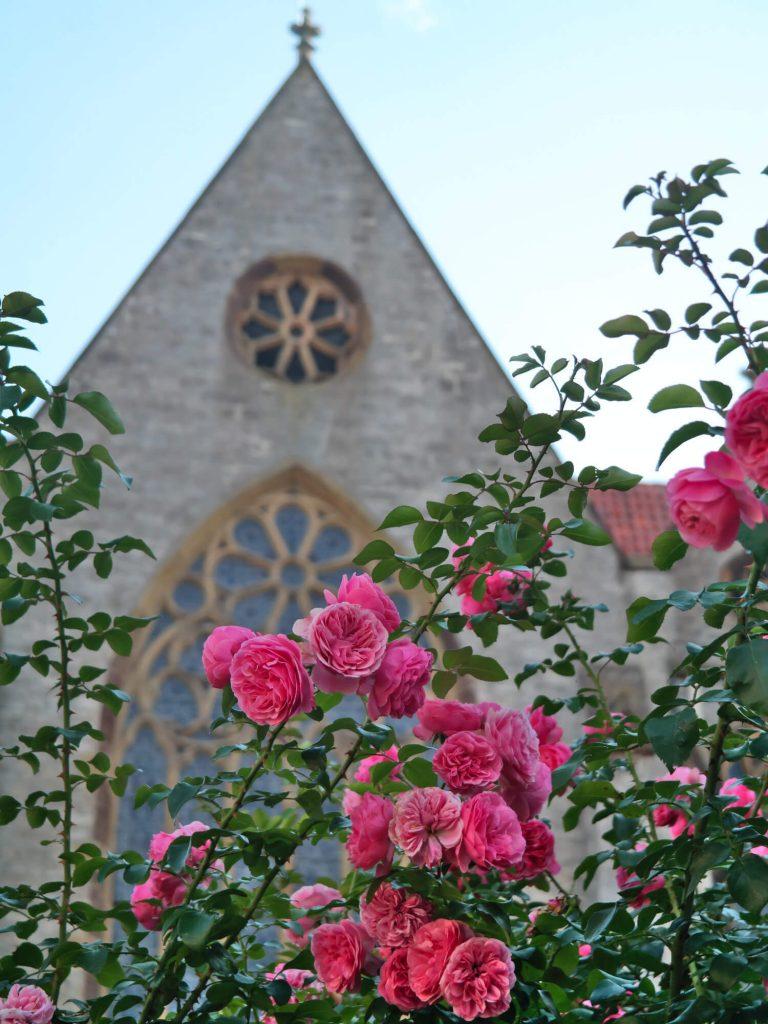 Kerk St. Mariae Geburt in Bad Laer