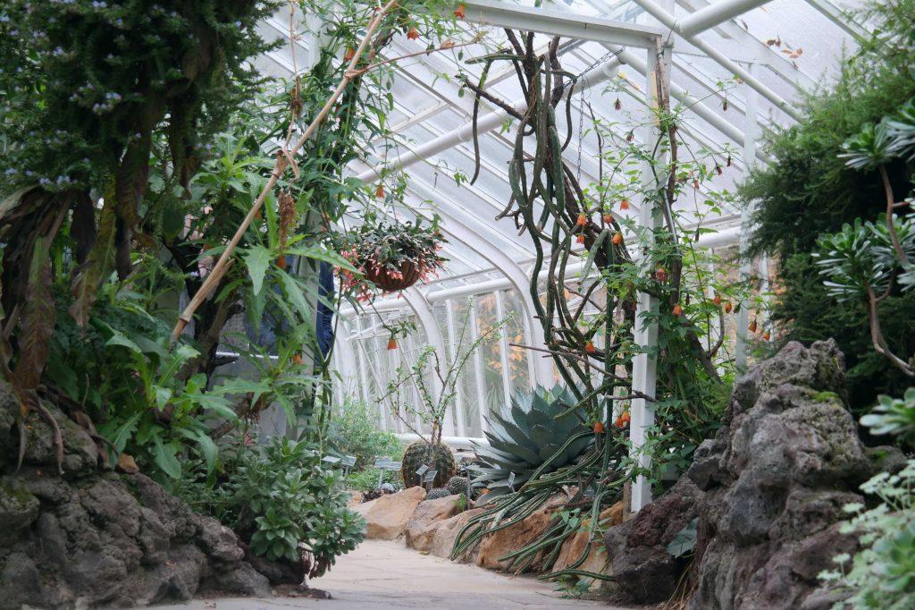 Münster botanische tuin