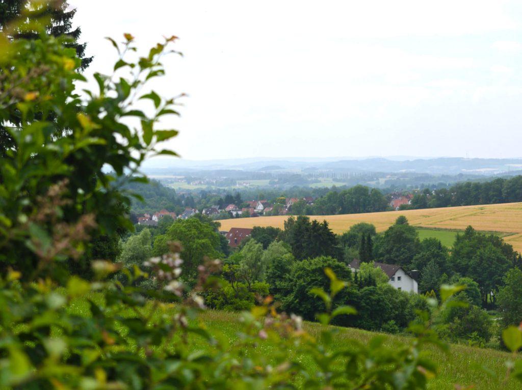 Wandelen oostelijke Teutoburger Wald Duitsland