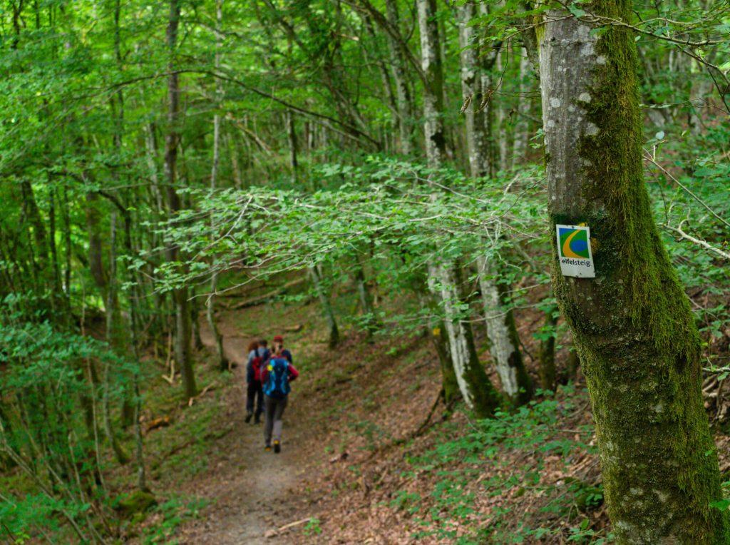 Eifelsteig etappe 11 Duitsland