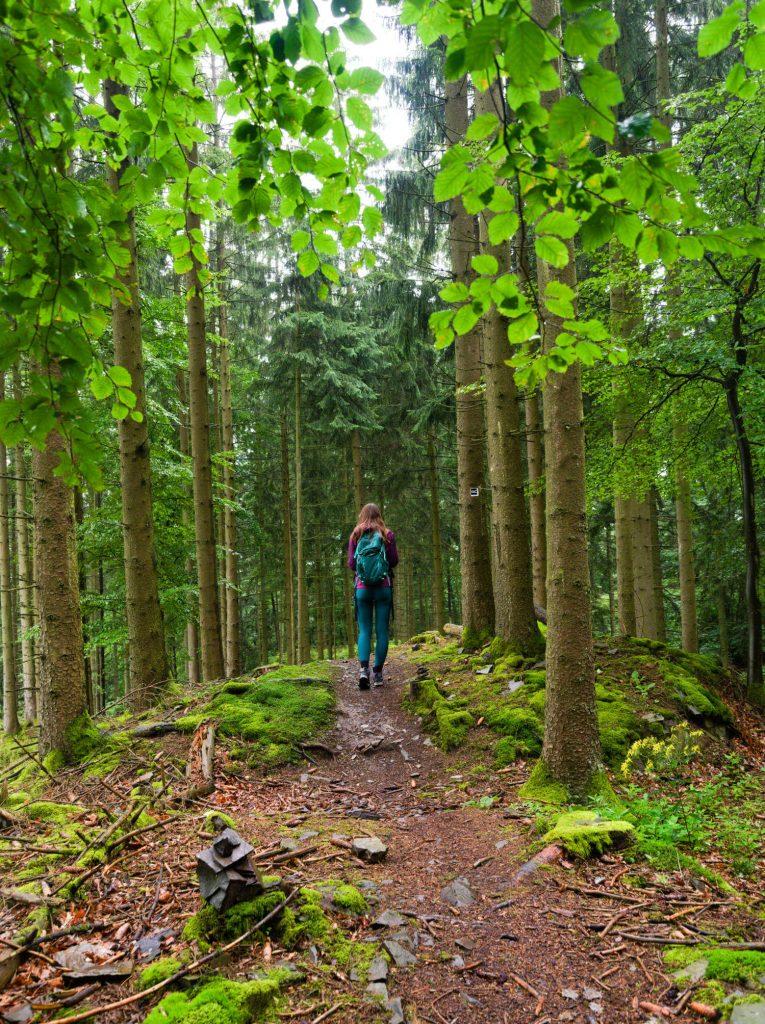 Sorper Panoramafpad wandelen in het Sauerland