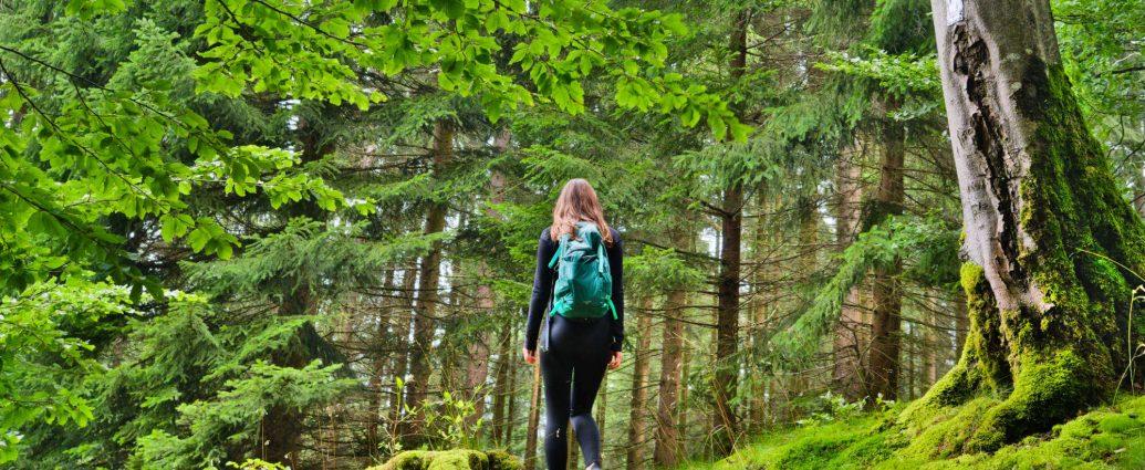 Wandelen Sauerland tips voor routes